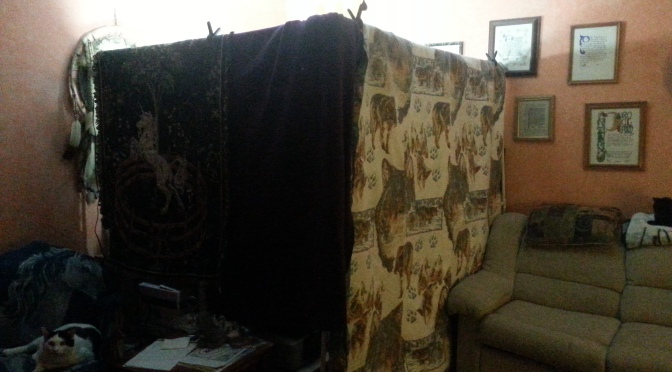 Building a Low-cost Video Recording Booth (High Tech Blanket Fort)